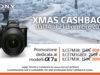 Xmas Cashback