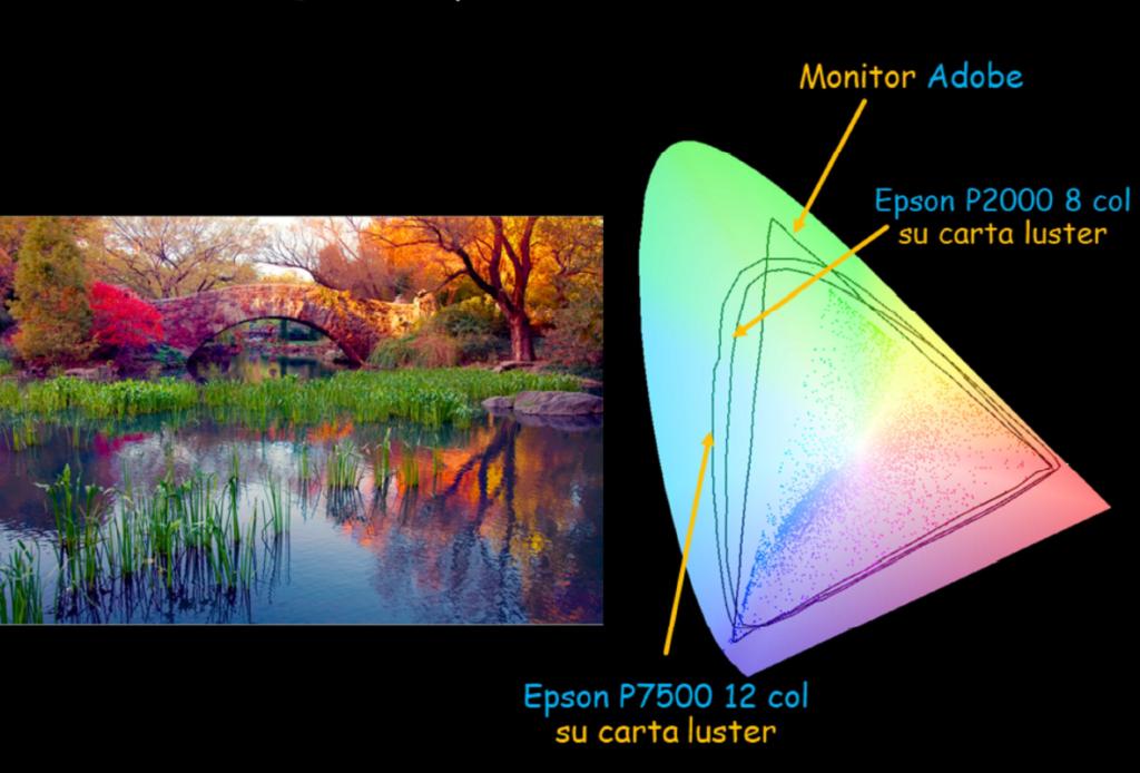 rappresentazione-colore-stampante-specifiche-spazio-colore