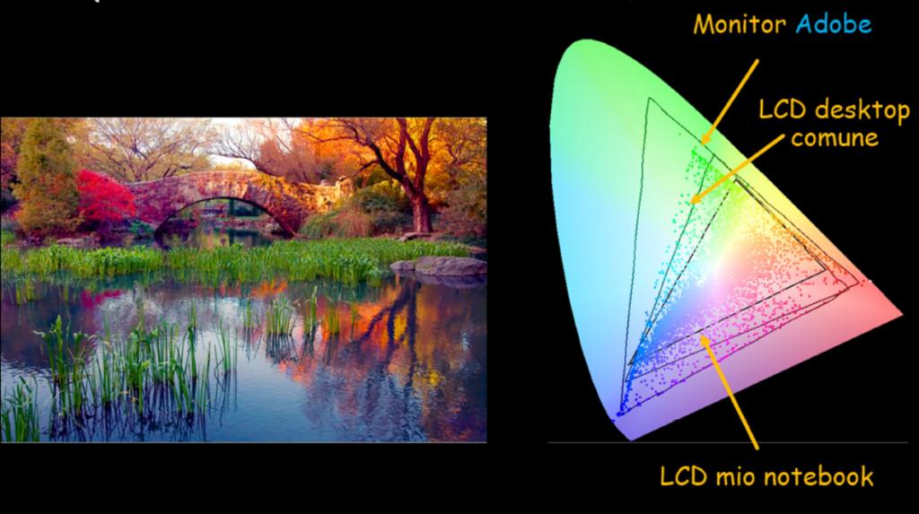 rappresentazione-colore-monitor