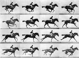 1-eadweard-Muybridge-opere-cavallo