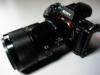 lenti-per-macrofotografia-Sony-FE-90mm-f-28-G-OSS
