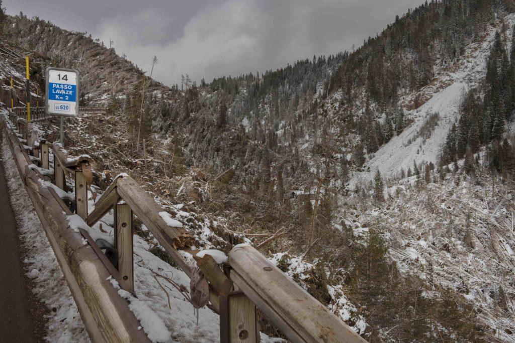 03-Foresta-distrutta-di-Passo-Lavazè-tn-fallen