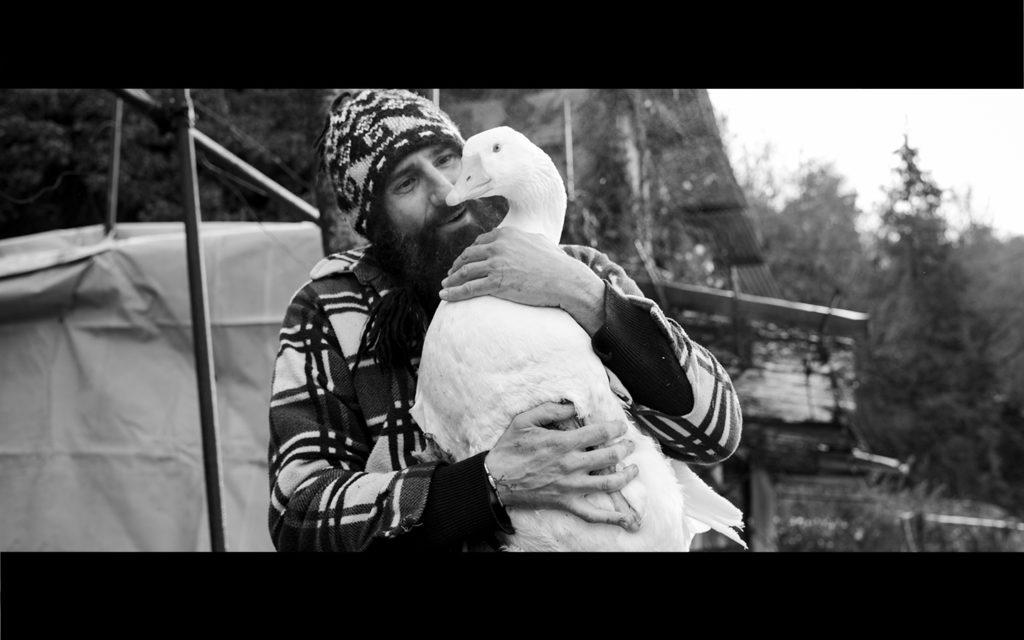 06_Giovanni-merla-squilibrio_e_Betty-film
