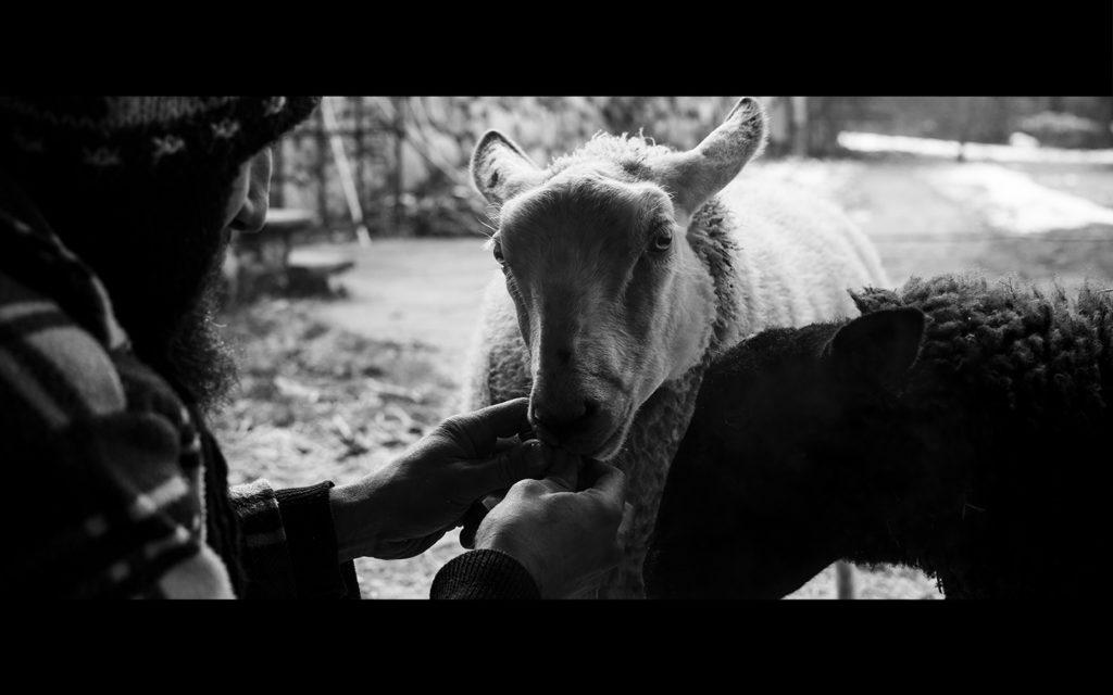 07_Giovanni,_Geppo_e_Maddalena-film-squilibrio