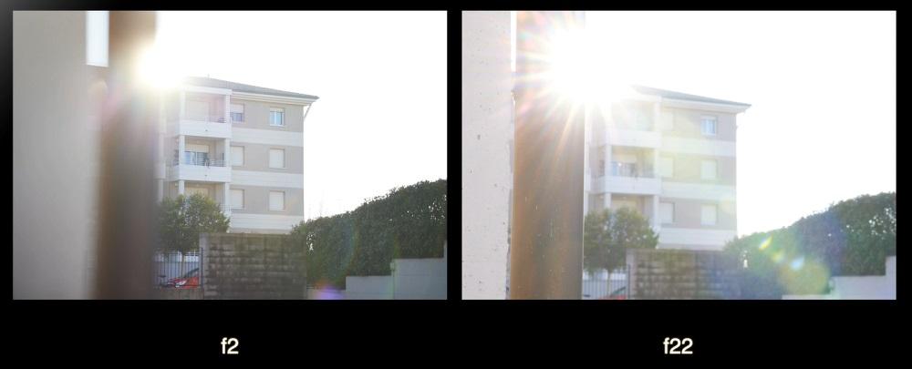flare-canon-rf-85mm-f2-macro-obiettivo-per-macrofotografia