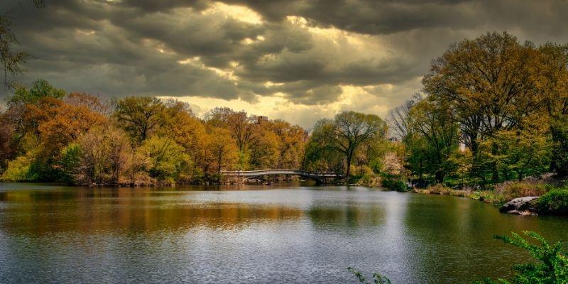 foliage-fotografare-foglie-durante-una-giornata-nuvolosa